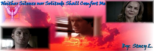 Neither Silence nor Solitude Shall Comfort Me spn banner by Stacy L.
